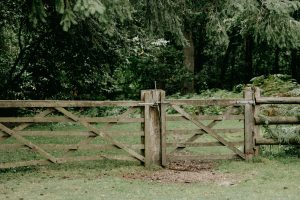 Green landscape with grass and trees. Old brown fence with a gate depicting a property line.